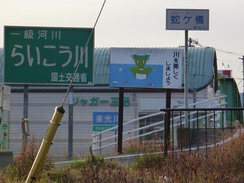 Jaguar_mishima_01