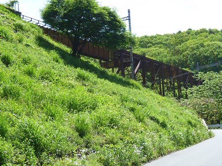 Tachibagawa_02