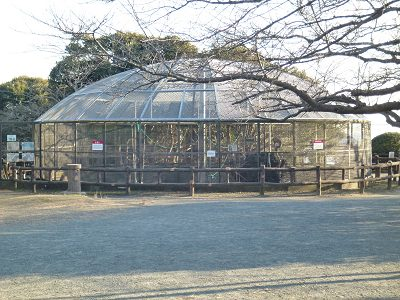 Hiroyama_03
