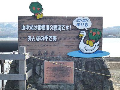 Yamanakako_01
