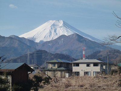 Kawamo_03