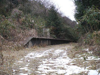 Kashima_21