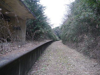 Kashima_22