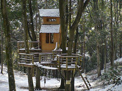 Treehouse_02