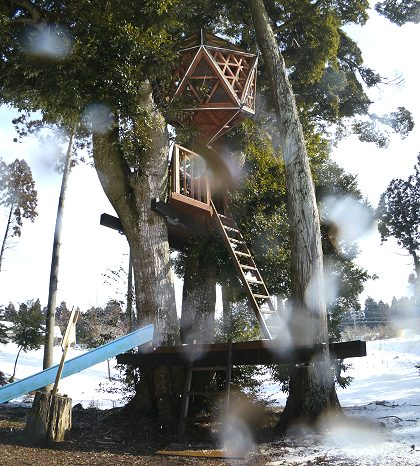 Treehouse_11