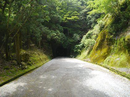 Amagi_tunnel_01