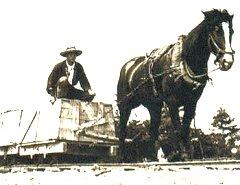 Horse_truck