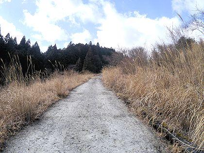 Mochikoshi_61