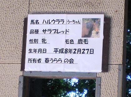 Urara_04