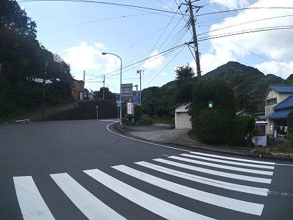 Shingo_02