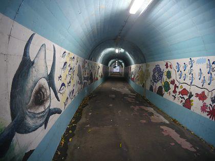 Shimoda_tunnel_02