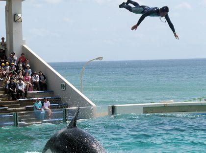 Jump_02