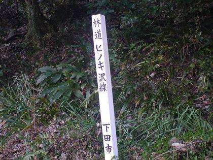 Hinokisawa_08