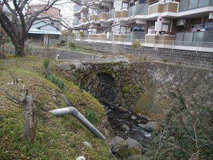 Yaguchi_01