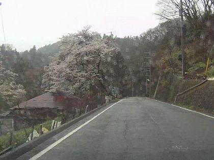 Kowada_01