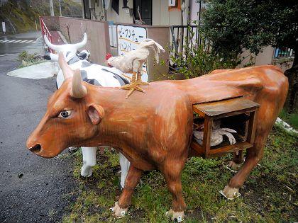 Cow_04