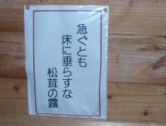 Matsutake_01