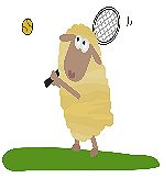 Tennis_sheep