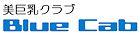 Blue_cab