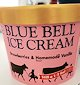 Bluebell_ice