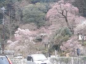 mishima2